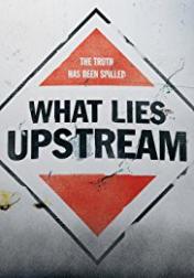 What Lies Upstream 2017