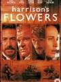 Harrison's Flowers 2000