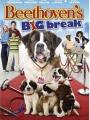 Beethoven's Big Break 2008