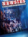 Disney's Newsies the Broadway Musical 2017