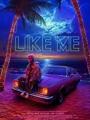 Like Me 2017