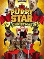 Puppy Star Christmas 2018