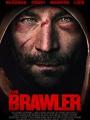 Brawler 2019